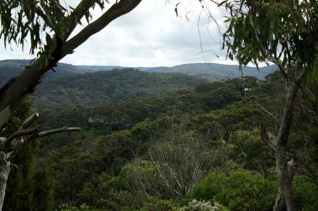 Lorne victoria, victoria, hills, trees, landscape, nature, Australia, photo, photography, oz nature shots, Emmy Silvius