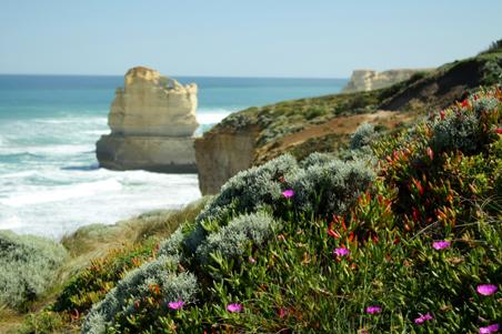 great ocean road victoria, victoria, sea, coast, landscape, nature, Australia, photo, photography, oz nature shots, Emmy Silvius