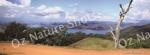 mug, drinking mug, lake eildon victoria, lake eildon, victoria, lake, landscape, nature, Australia, photo, photography, oz nature shots, Emmy Silvius