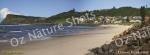 mug, drinking mug, Lennox head NSW, beach, sea, sand, northern nsw, landscape, nature, Australia, photo, photography, oz nature shots, Emmy Silvius