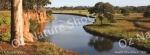mug, drinking mug, south werribee, werribee river, river, werribee, landscape, nature, Australia, photo, photography, oz nature shots, Emmy Silvius